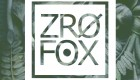 Consequence of Sound Premieres Debut EP From Chicago Rap Duo ZRO FOX (ProbCause & Hologram Kizzie)