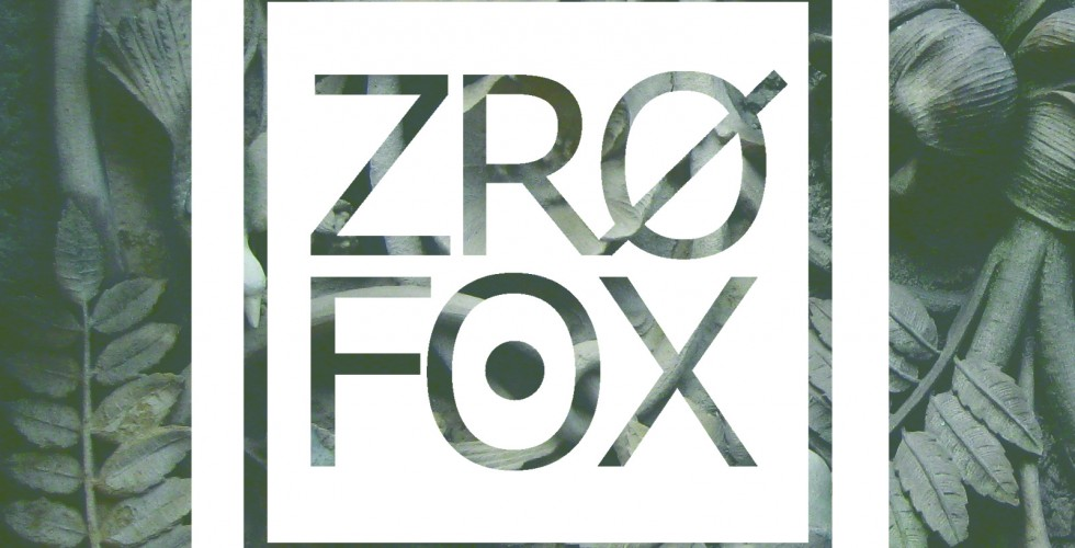 Consequence of Sound Premieres Debut EP From Chicago Rap Duo ZRO FOX (ProbCause
